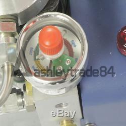 30MPa 4500PSI Air Compressor Pump Electric High Pressure System Rifle 110V
